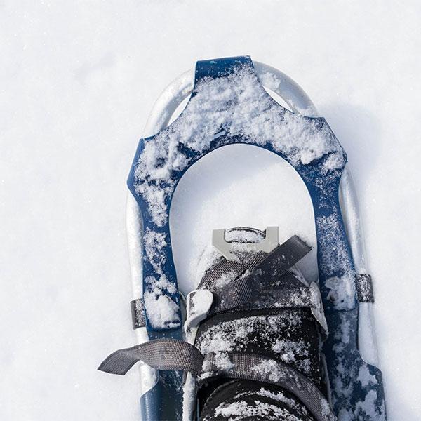 sport-schneeschuhwandern